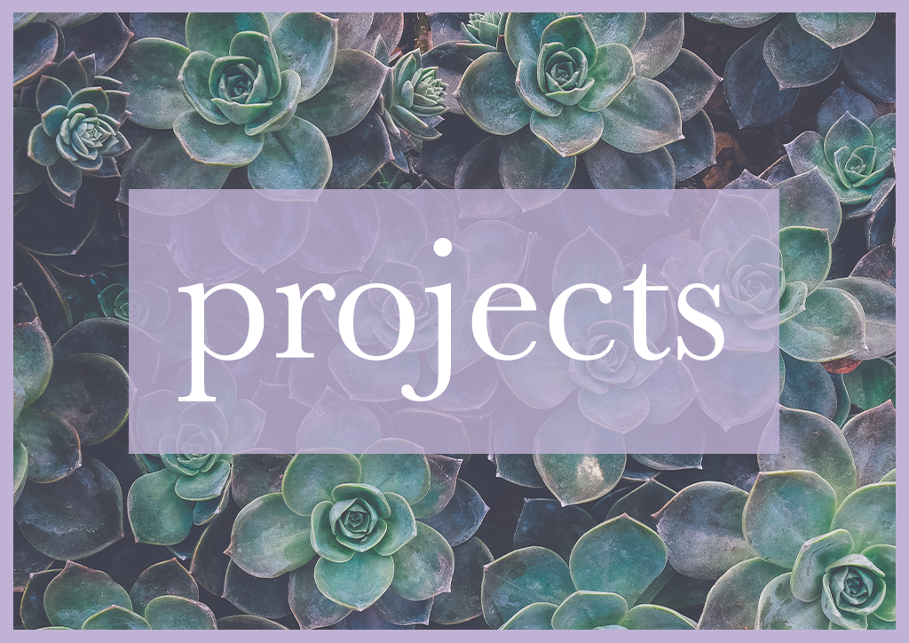 click here to learn about my projects.